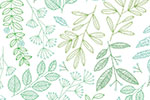 Cristina De Lera Illustration - cristina, de lera, digital, photoshop, illustrator, colourful, bright, mark making, licensing, repeat pattern, gift wrap, wrapping paper, leaves, greenery, plants, pretty, detailed,