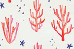 Ciara Ni Dhuinn Illustration - ciara, de dhuinn, licensing, digital, photoshop, illustrator, repeat patter, gift wrap, wrapping paper, wallpaper, wall covering, ocean, sea, seaweed, plants, nautical