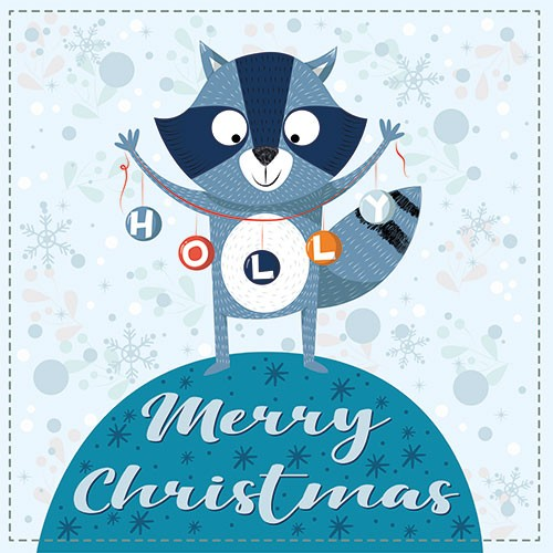 Ana Garcia Illustration - ana, garcia, ana garcia, digital, han drawn, photoshop, postcard, illustrator, colourful, bright, greetings card, greeting, stationary, pattern, cute, sweet, racoon, animal, wild, christmas, festive, seasonal, holly, text, words, baubles, snowflakes
