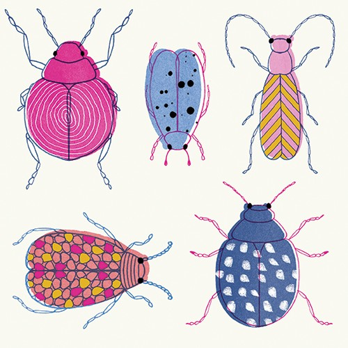 Emily Hamilton Illustration - emily, hamilton, emily hamilton, digital, photoshop, illustrator, post card, greetings card, licensing, art licensing, texture, pattern, bugs, insects, colourful, wild, animals, nature, beetles, line work,