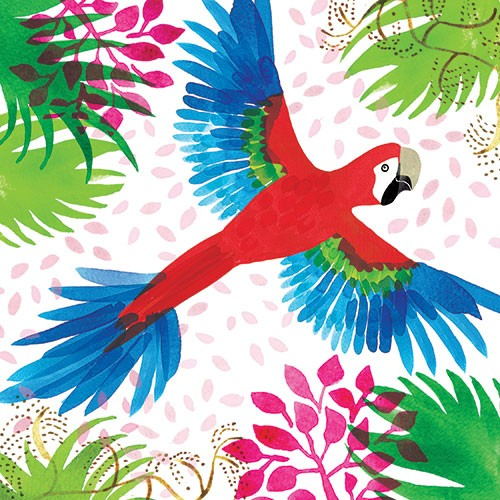 Jo Rooks Illustration - jo, rooks, watercolour, paint, photoshop, digital, painterly, graphic, colourful, tropical, trend, greetings card, parrot, birds, jungle, leaves, plants, flying,